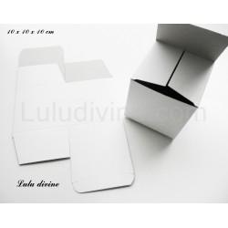 Boite / emballage de carton blanc (taille 10x10x10)