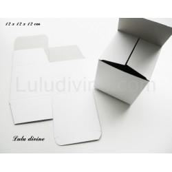 Boite carton : 12 x 12 x 12 cm